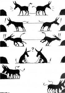 visuel des ânes direct